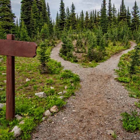 Outdoor outlet Hiking Activities About